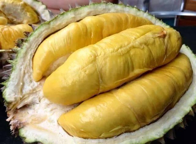 Phân biệt trái sầu riêng Dona Thái với loại sầu riêng khác