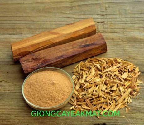 gỗ quý đàn hương ấn độ