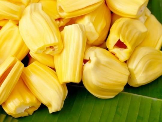 cách chăm sóc cây mít Thái